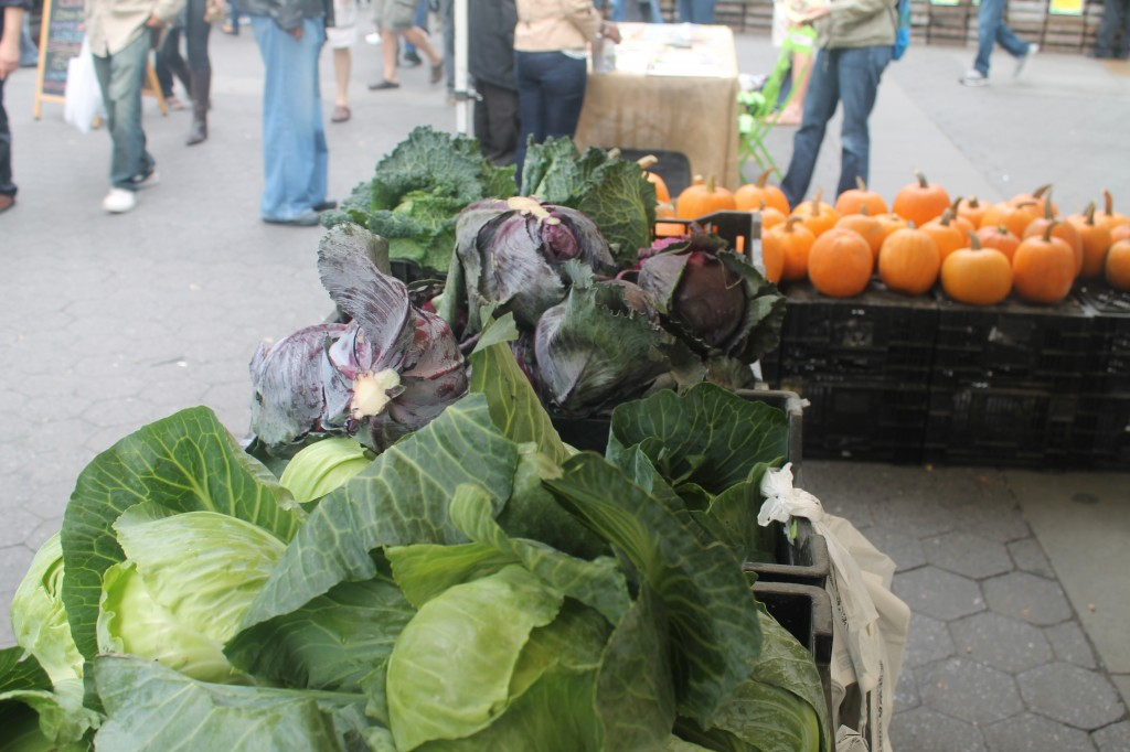 cabbage and pumpkins at Union Sqare Greenmarket