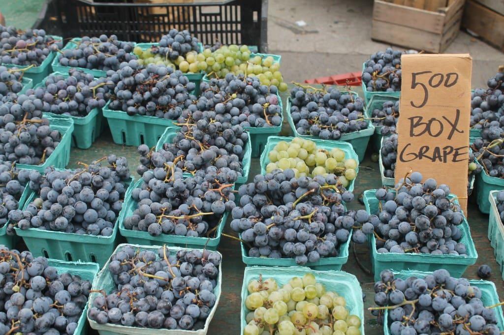 grapes at Union Square Greenmarket