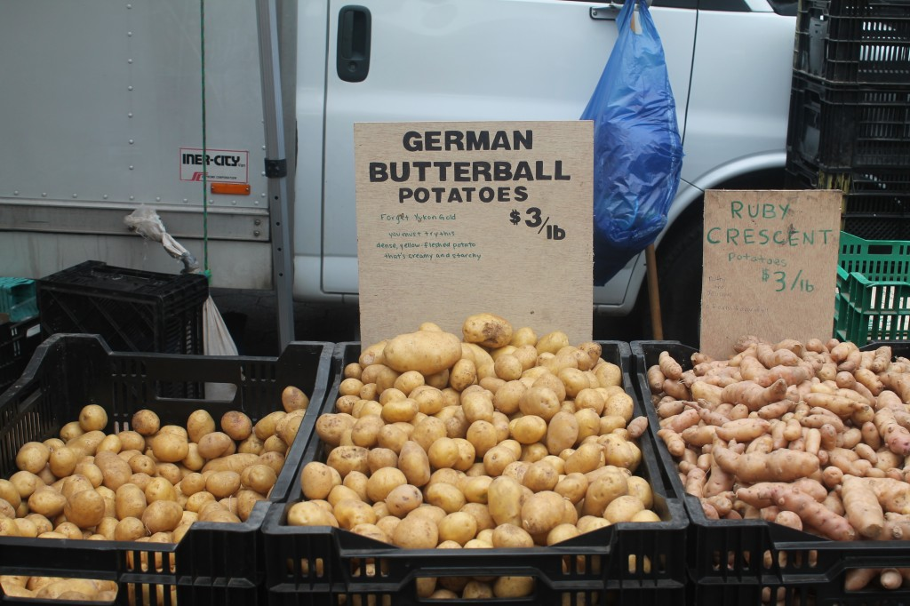 German Butterball potatoes at Union Square Greenmarket