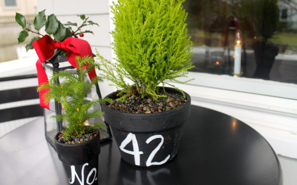 little pots with our address and Christmas trees for the front porch