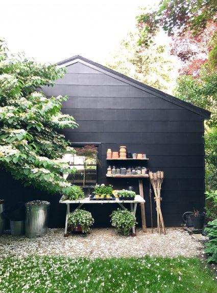 Friday Favorites + Backyard Potting Area