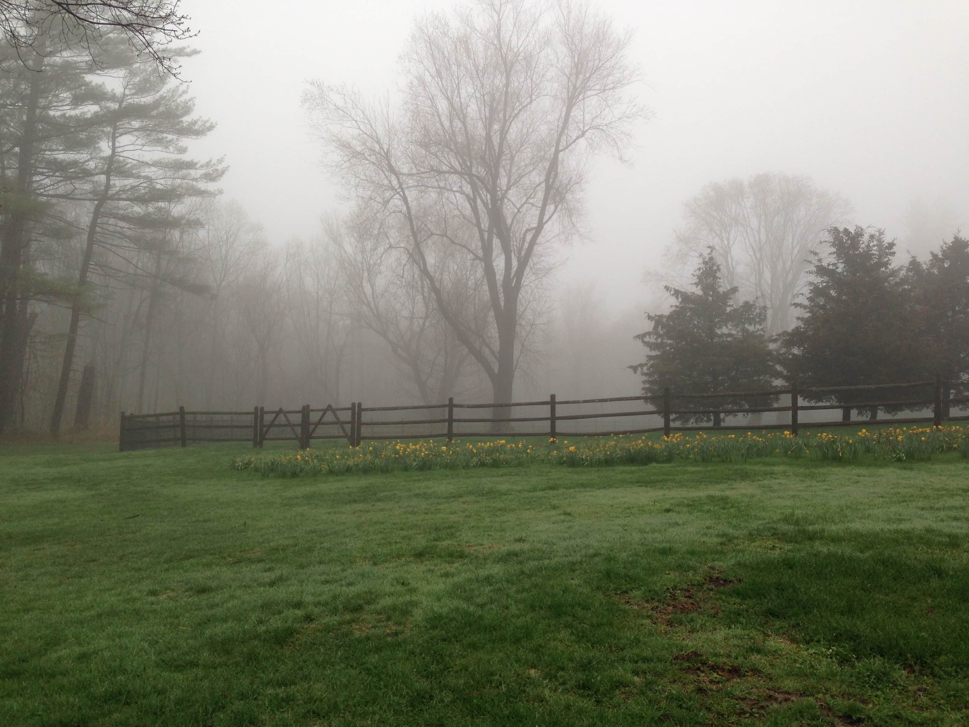 Waveny Park in New Canaan on May 1
