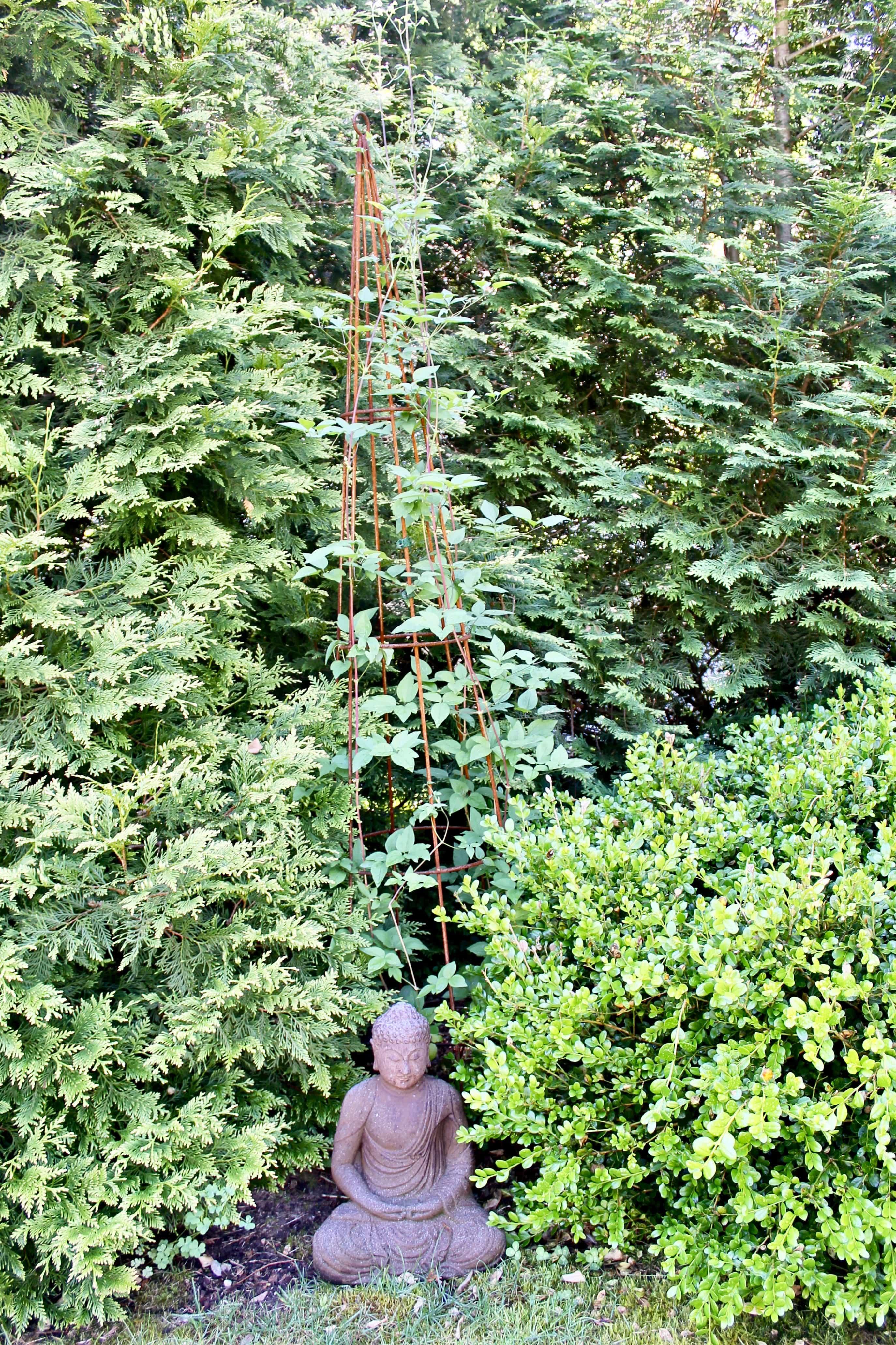 Zen Garden and Clematis Vines in Westport, CT Garden