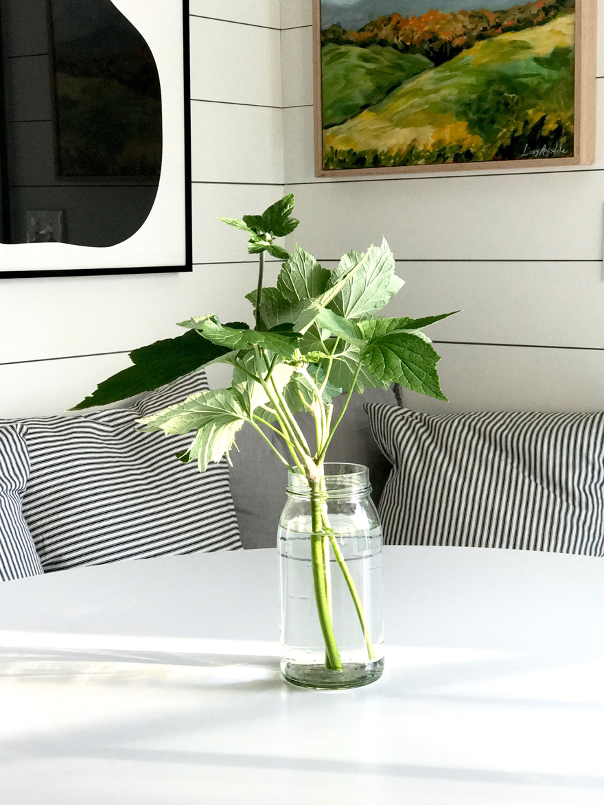 Art-Lizzy-Love-glass-jar-garden-clippings-shiplap-enzo-mari-apple-pear
