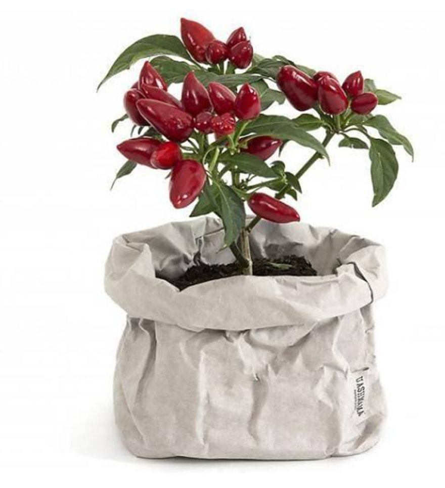 UASHMAMA-Paper-Bags-Made-In-Italy-Extra-Small-Grey