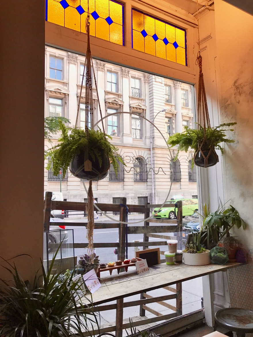 Marche-Maman-French-Marketplace-NYC-Stained-Glass-Window-Hanging-plants