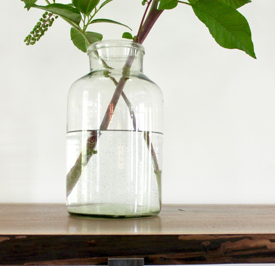 Pokeweed-Clear-glass-Jar-decor-dining-room