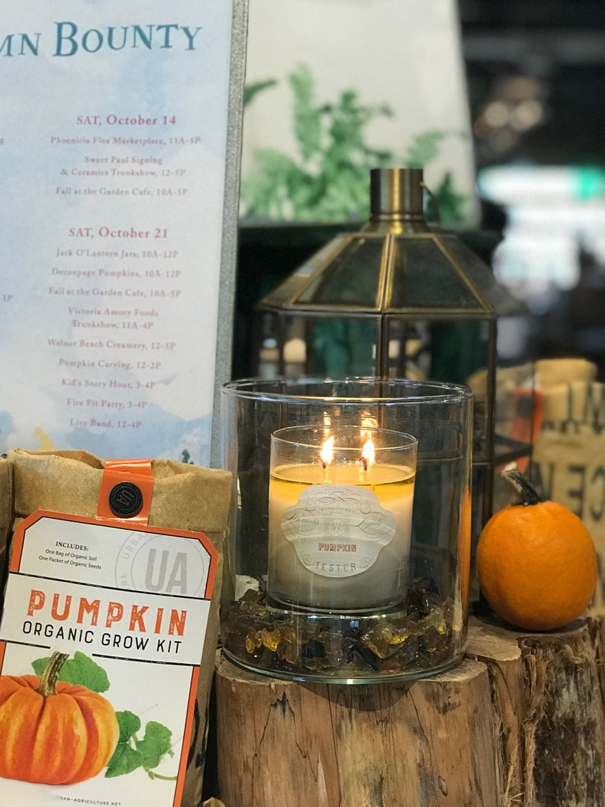 autumn-bounty-terrain-westport-pumpkin-candle