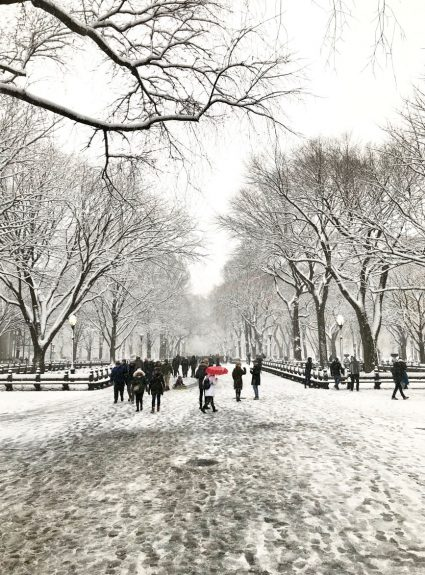 Central Park in Snow + 12 Days of Holiday Homes Tour Continues