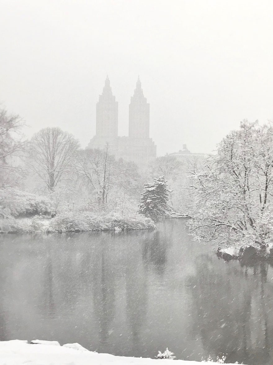 The fist snowfall in New York City and the conditions make it seems as though the photo is in black and white