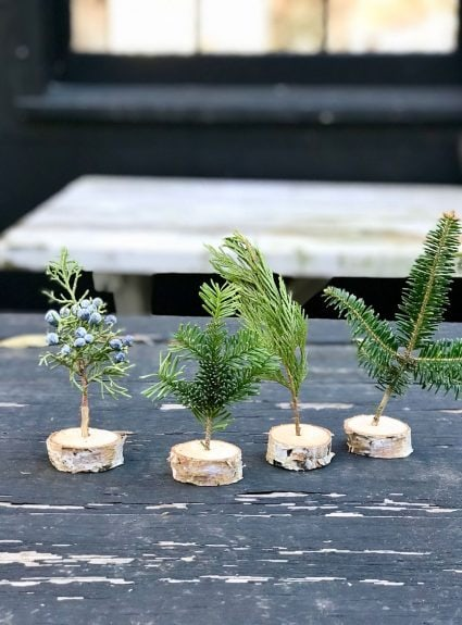 DIY Birch Branch Mini Tree Holders