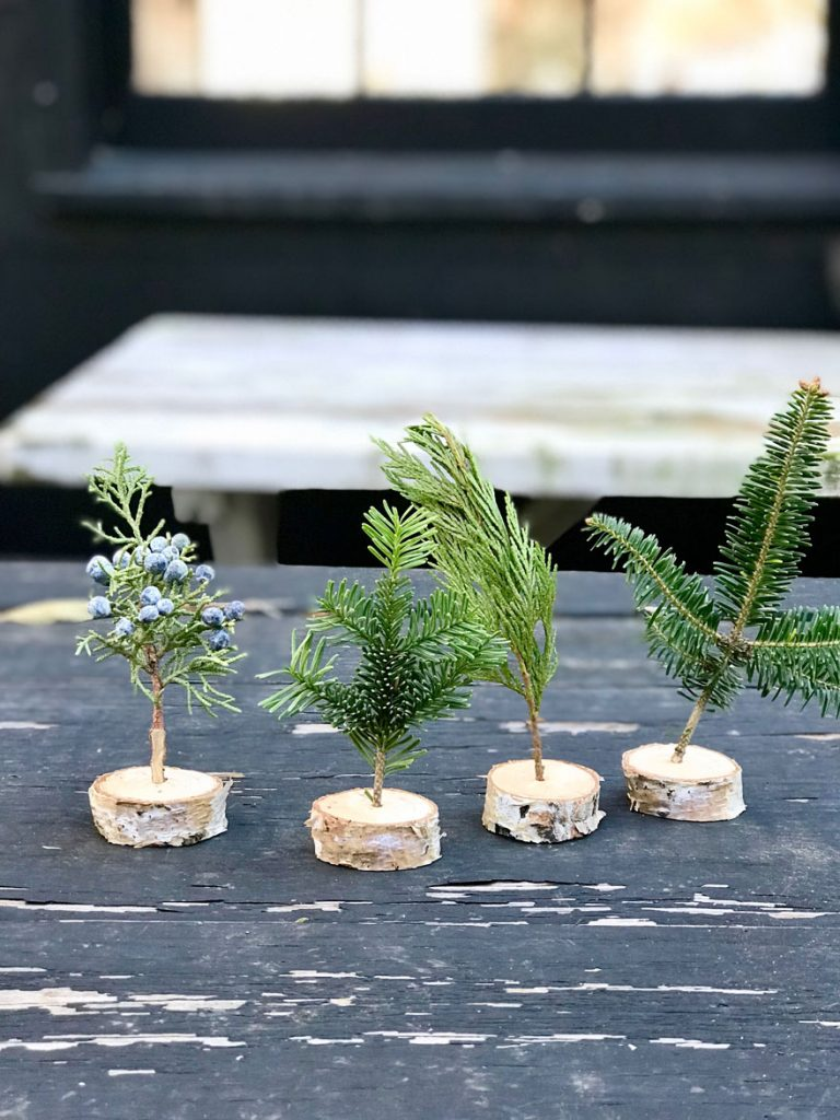 A tiny forest of trees in mini birch branch holders