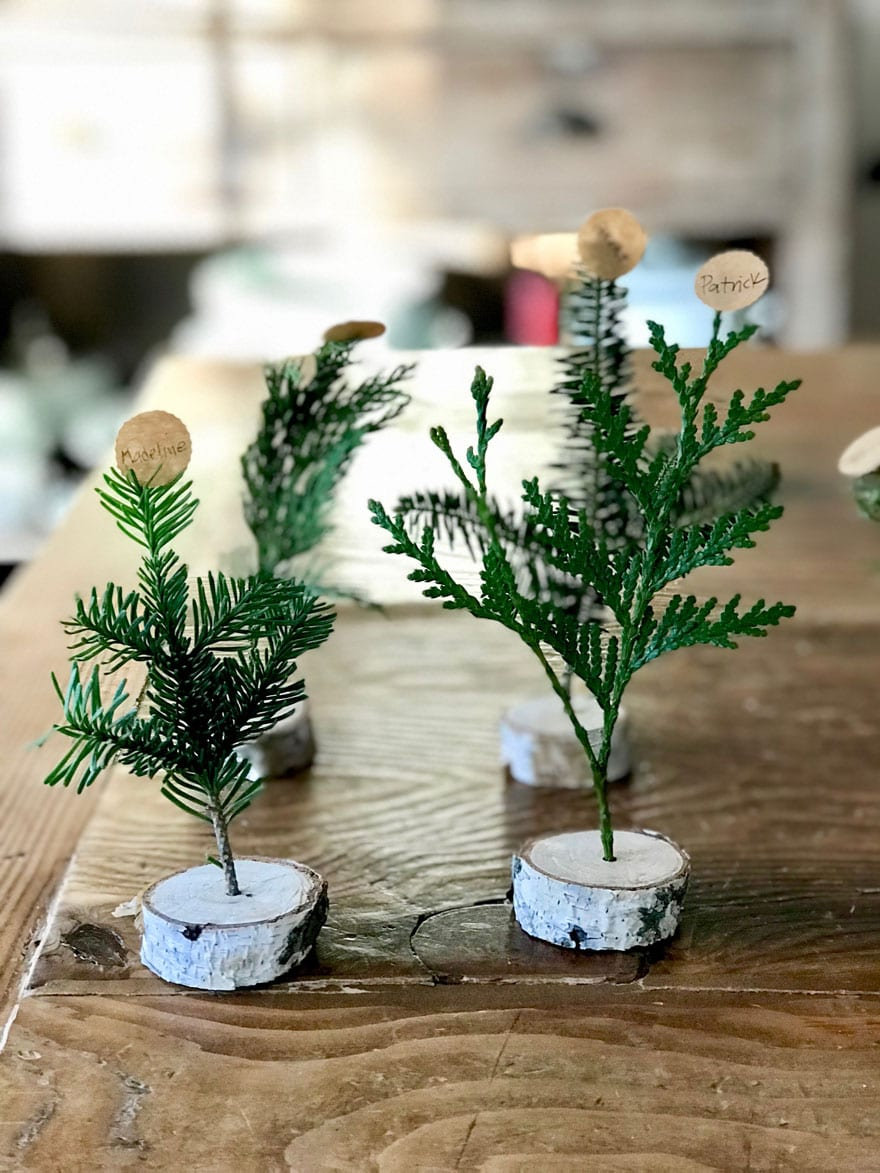 Rustic birch branch and evergreen cuttings for winter place cards
