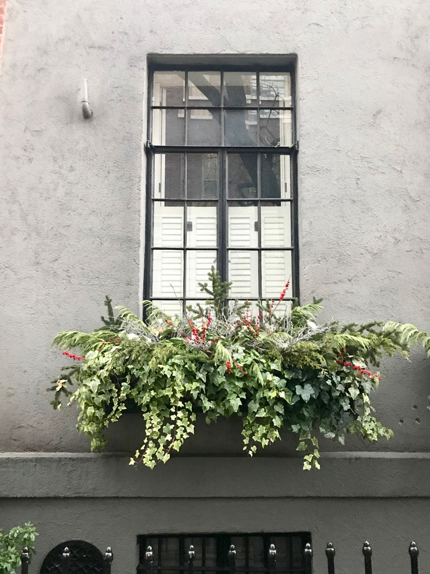 Winter window boxes on Grove Street in the West Village, New York