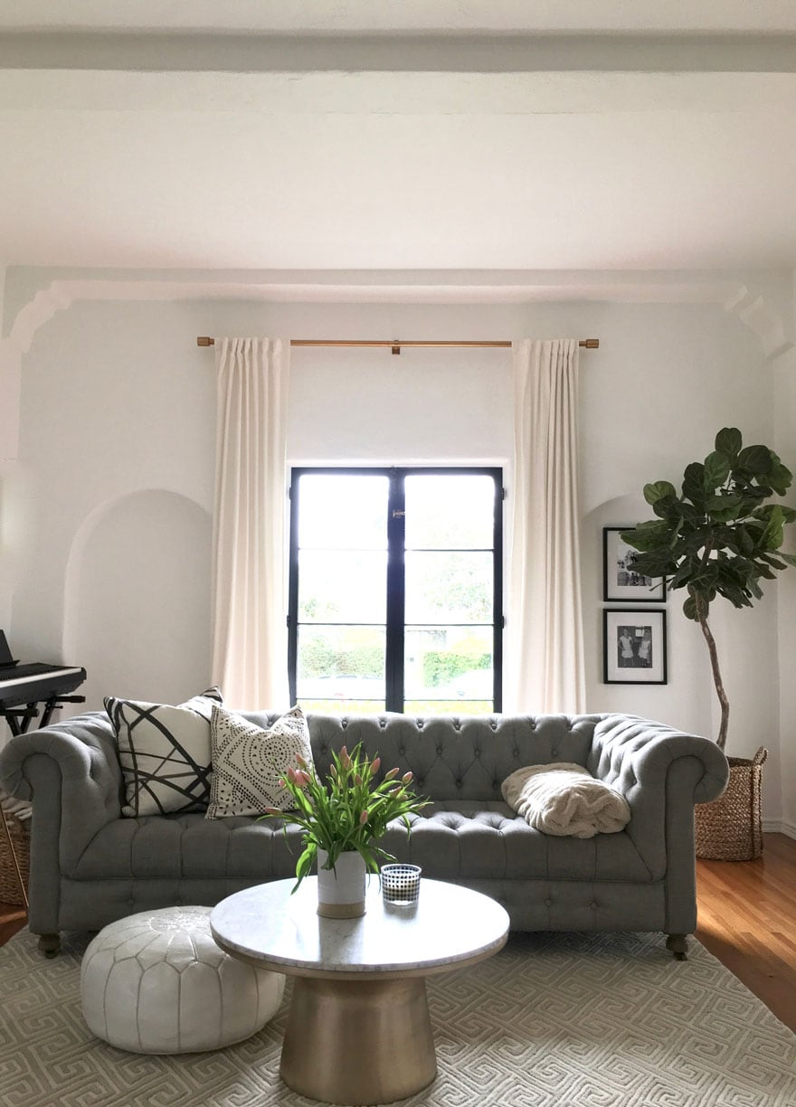 sofa, plant, living room with window