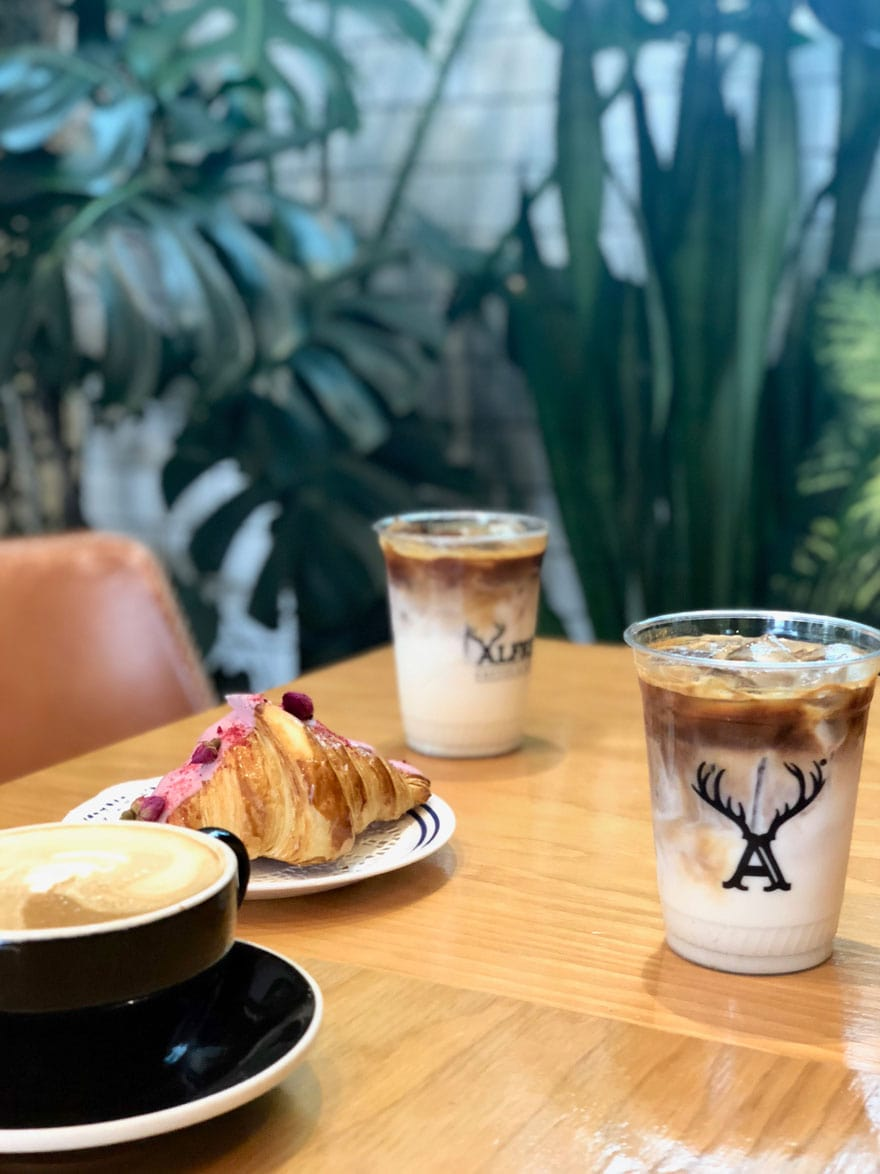 iced lattes, cappuccino on table with plants in background