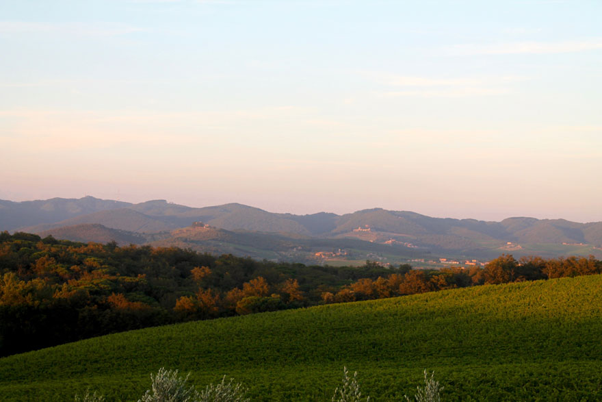 hills in tuscany in summer