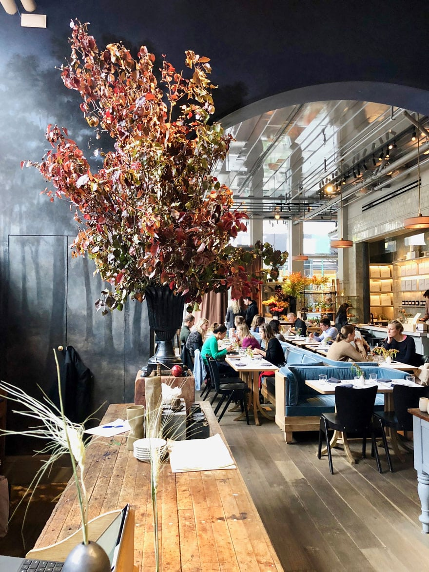 fall leaves in huge vase, archway with tables, counter