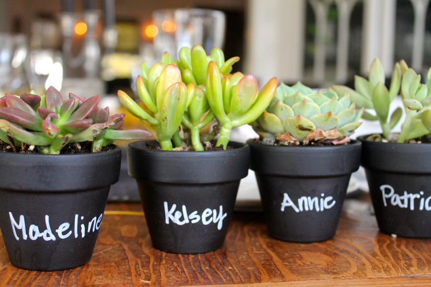 small black pots with succulents and names on each pot