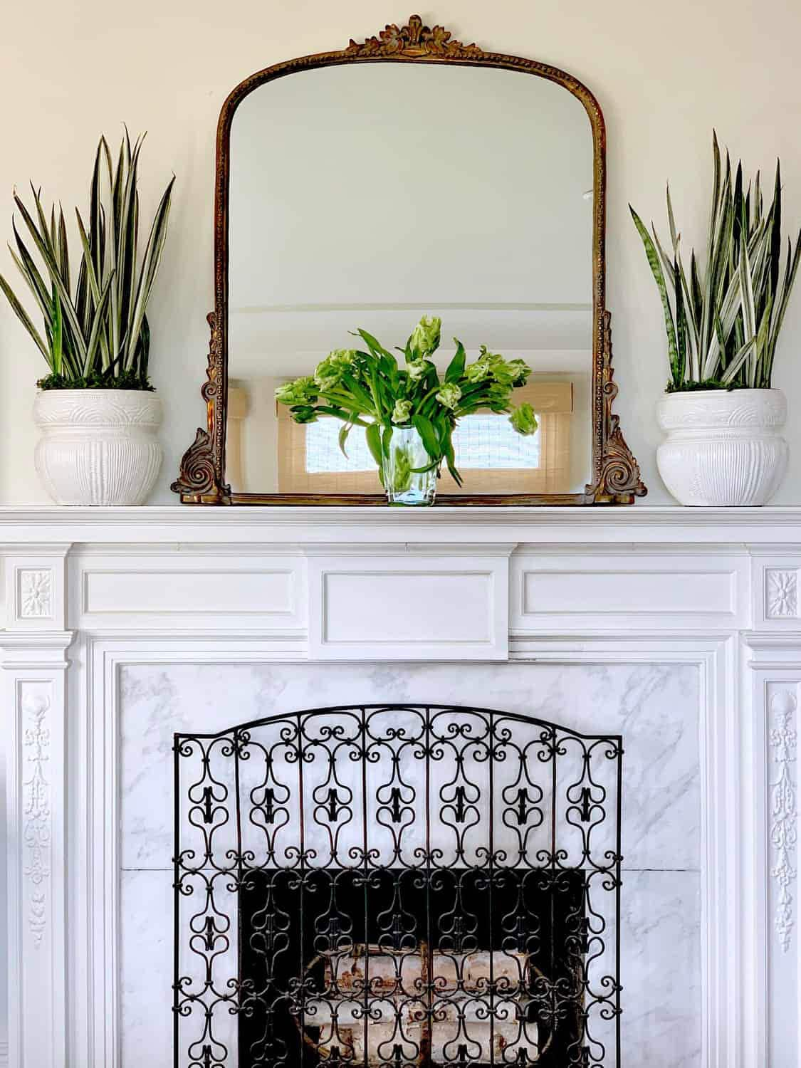 fireplace with mirror flowers and plants