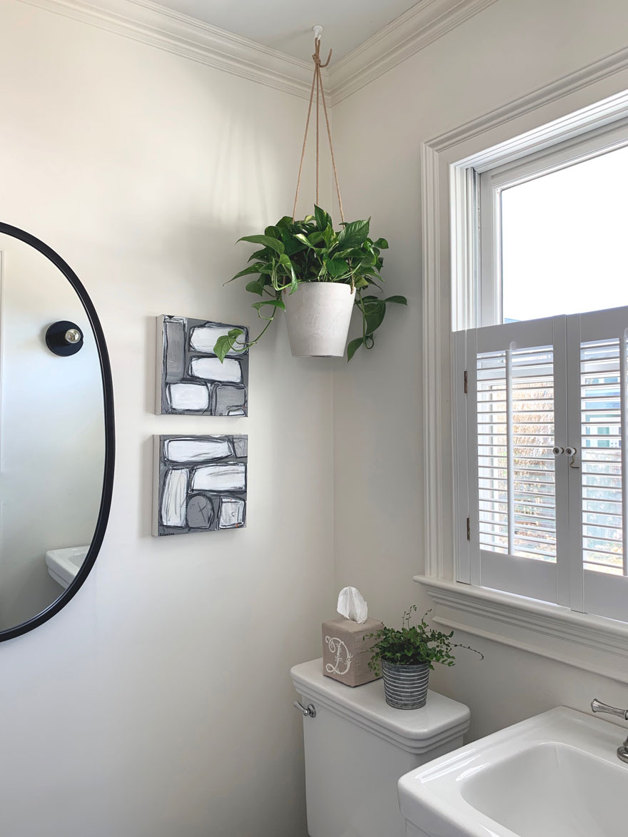 mirror, sink, art, plants, tissue box
