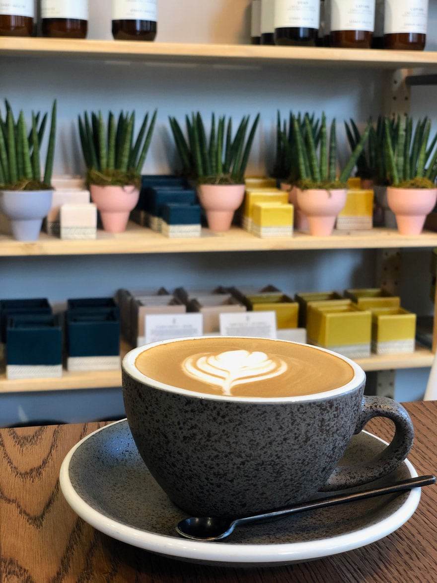 cappuccino with plant in background
