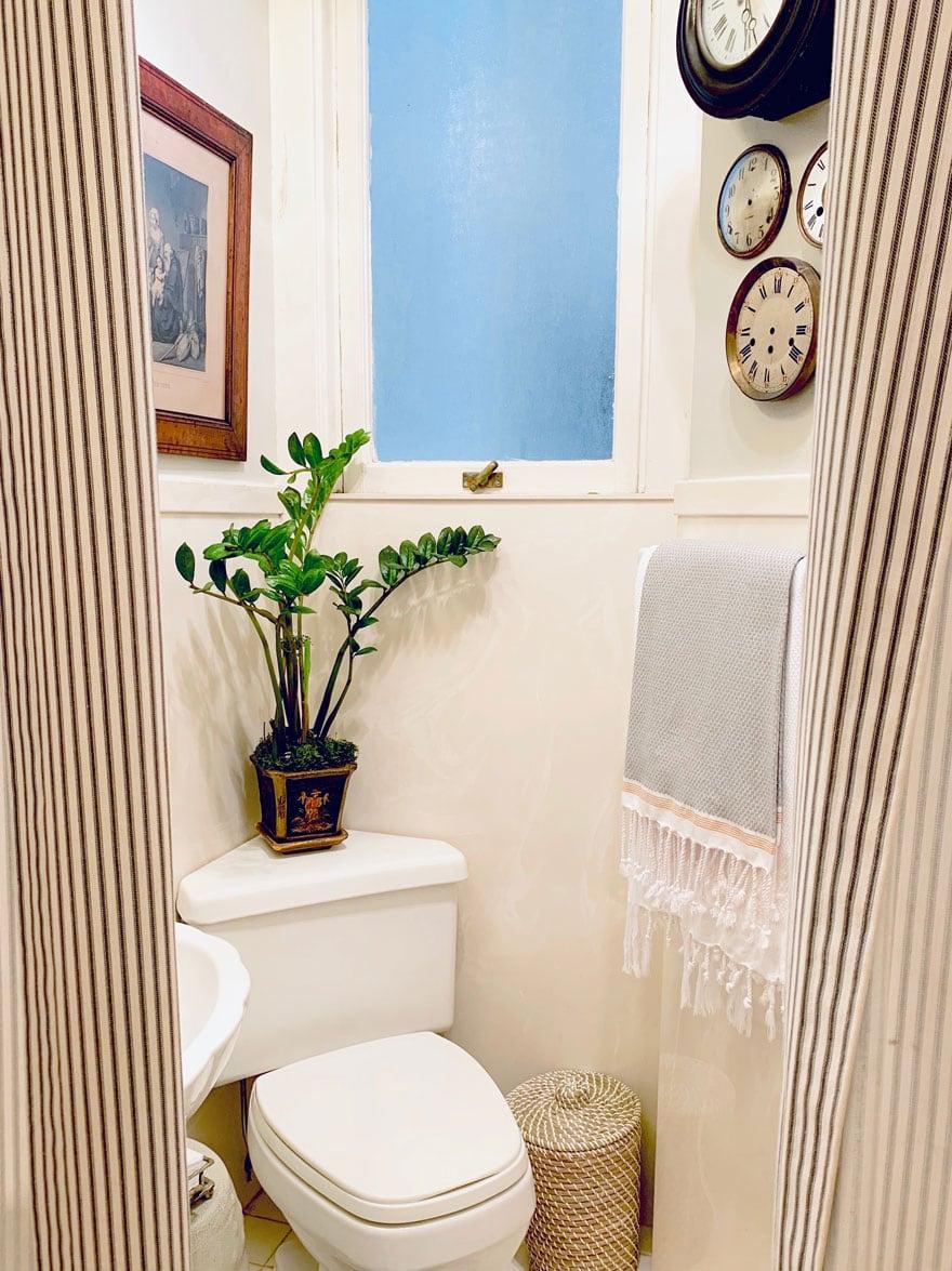 toilet, plant, clock faces