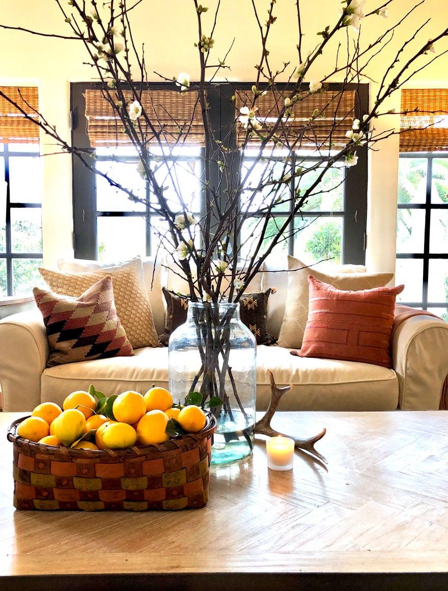 lemons, branches, sofa, pillows