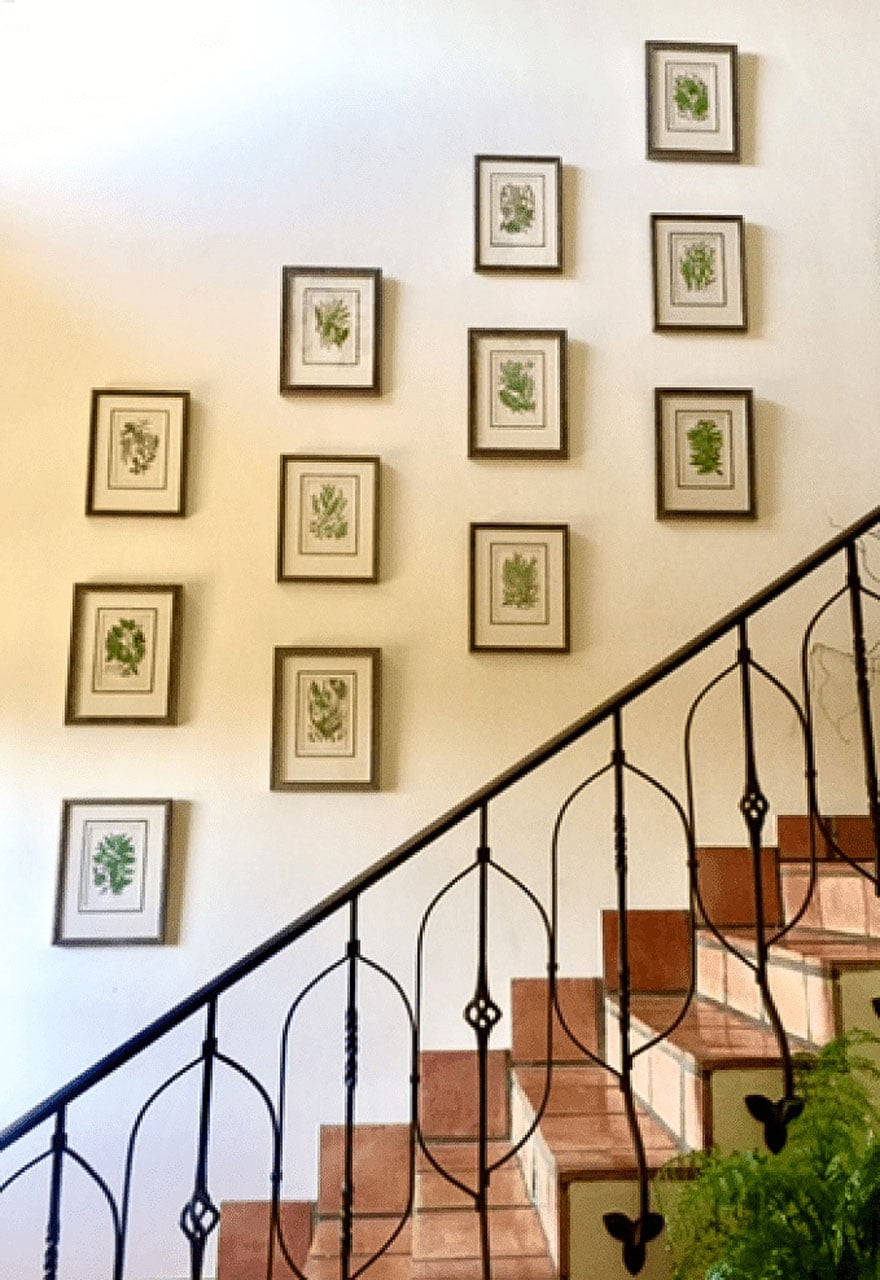 stairway, botanicals on wall in frames