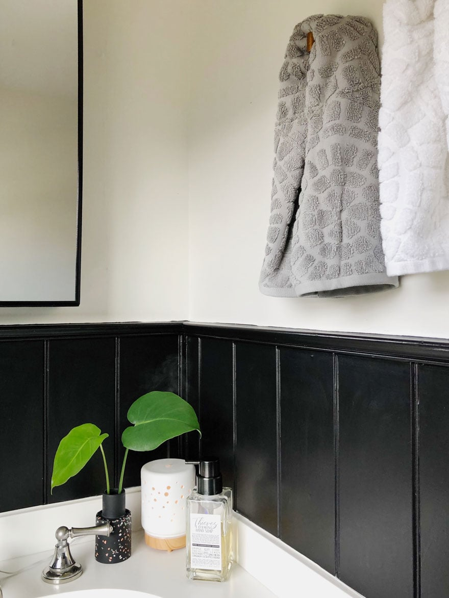 diffuser, leaves in small black vase, soap on bathroom counter with black walls