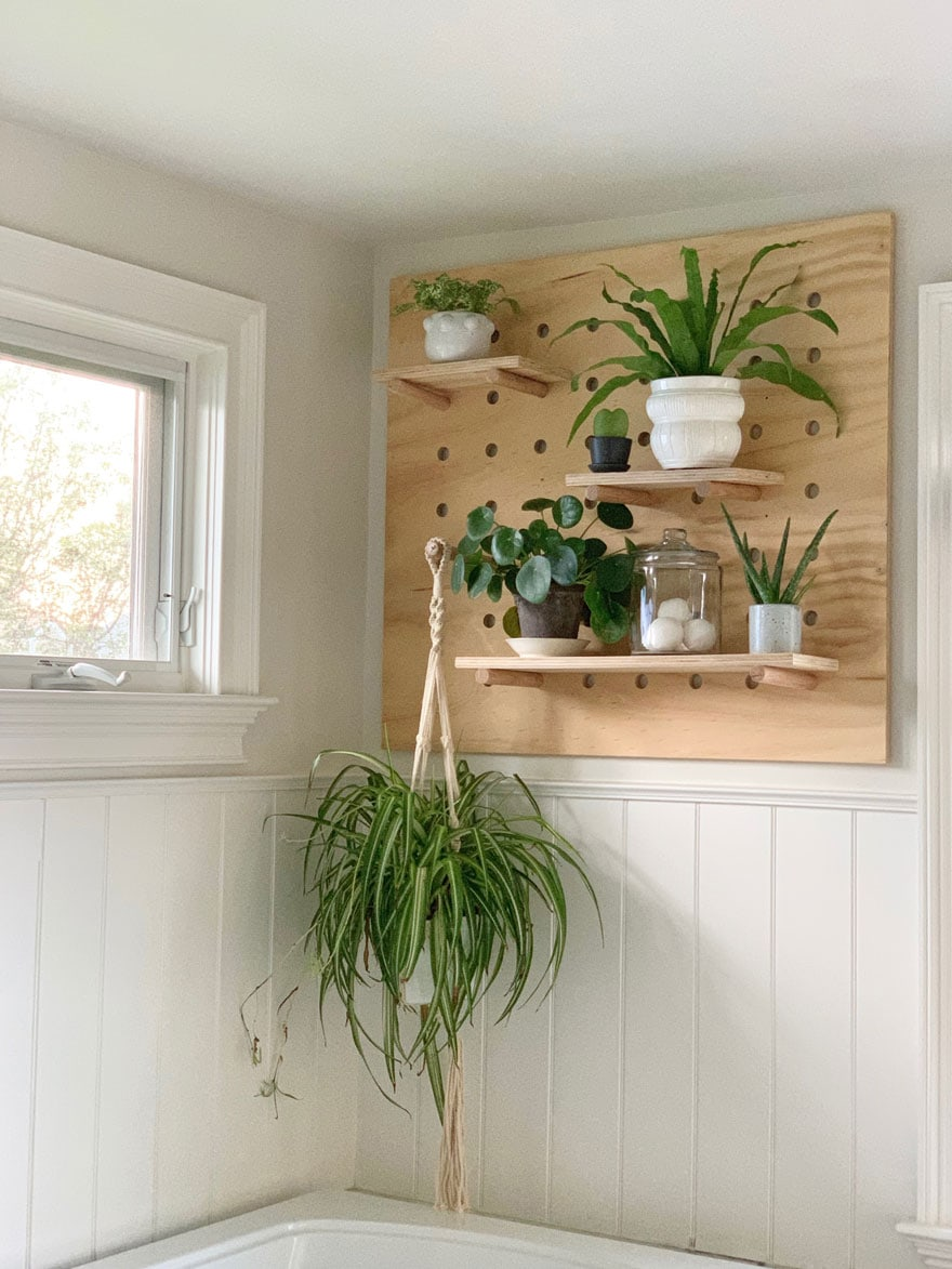peg board with houseplants on wall