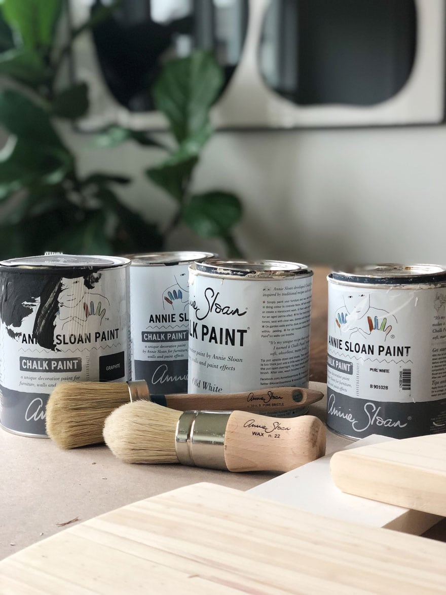 paint cans and brushes on tablle with plant