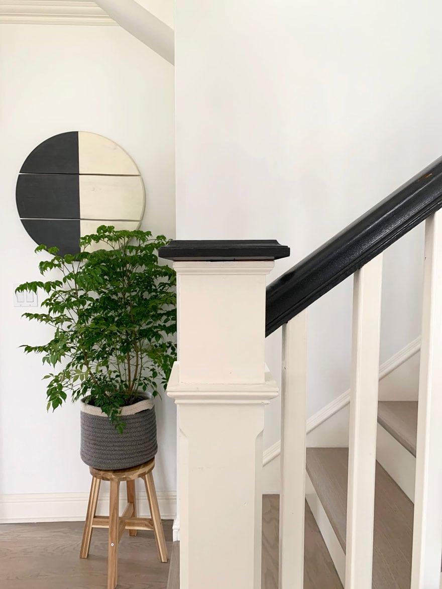 plant, wood wall round piece, bannister