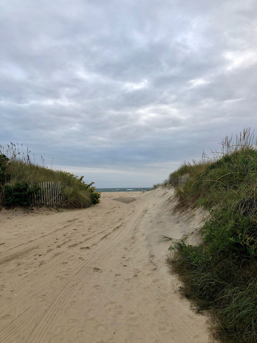beach grasses and pathway to beach on cloudy day