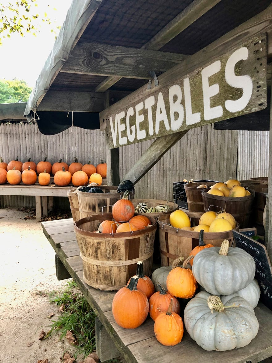 wood sign with vegetables painted on it, pumpkins at farm stand