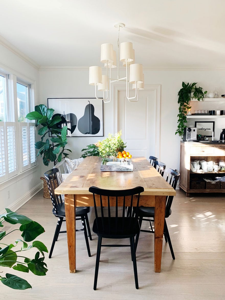 dining room table chairs, plants, chandelier