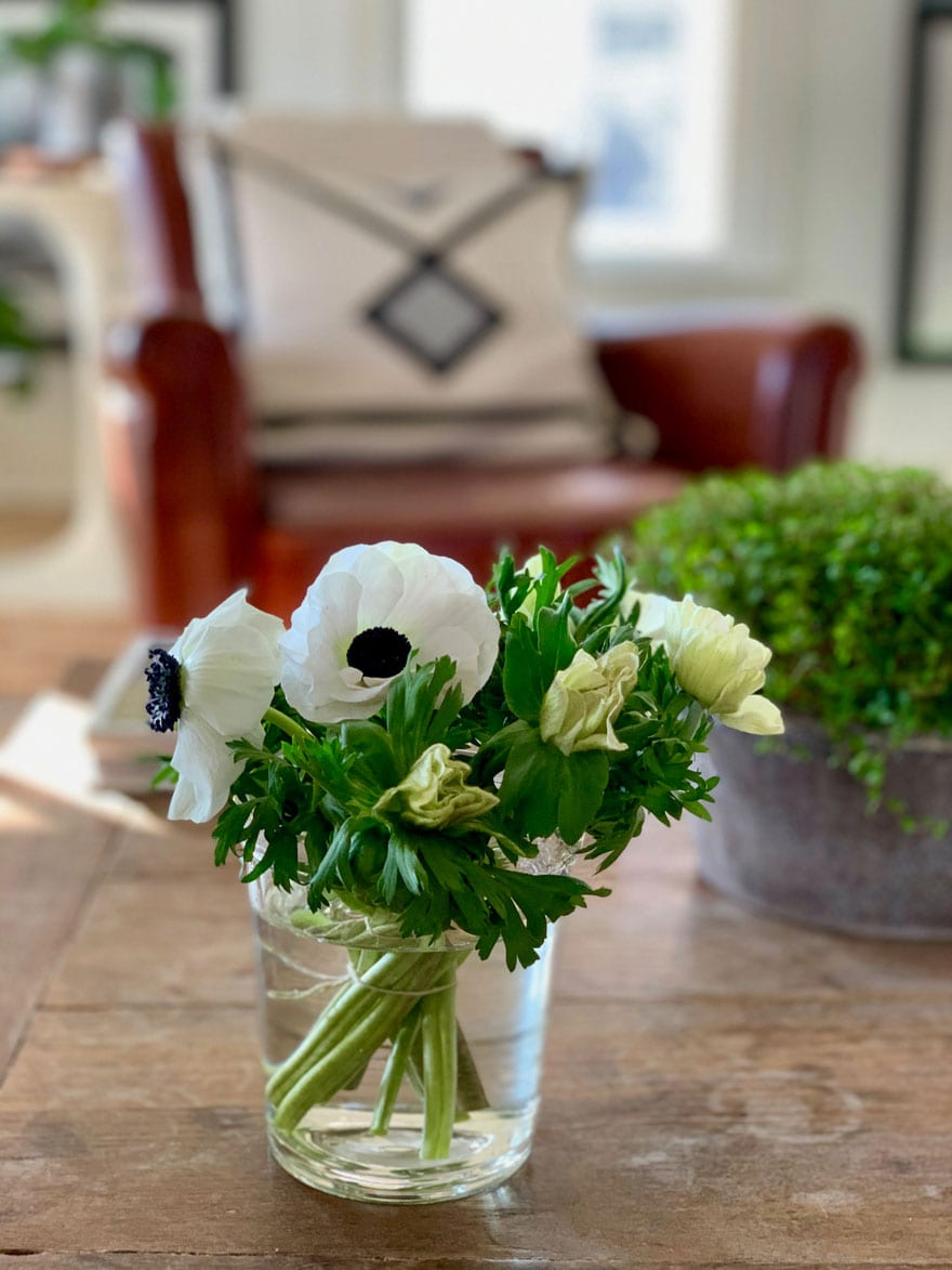 anemones black and white in clear glass vase