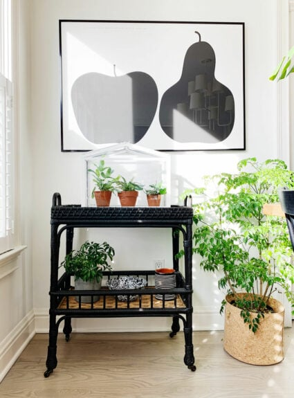 Serena & Lily favorites + 2 Ways to style a bar cart