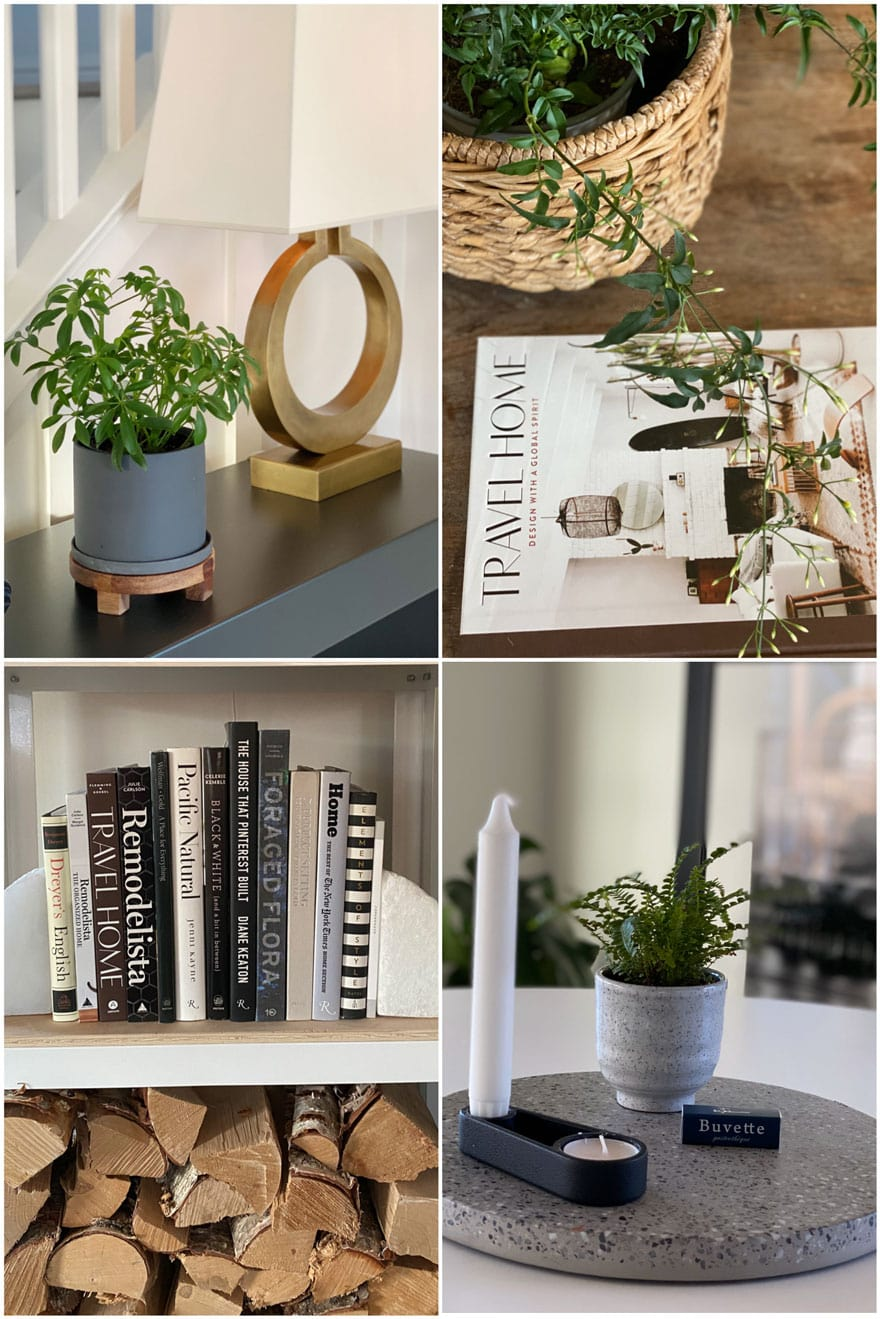 lamp, plants, books