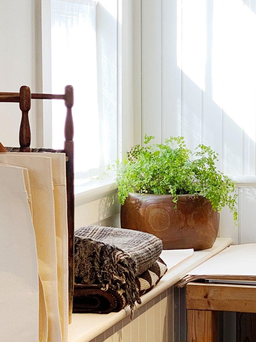 plant in wood planter, folded blankets, window