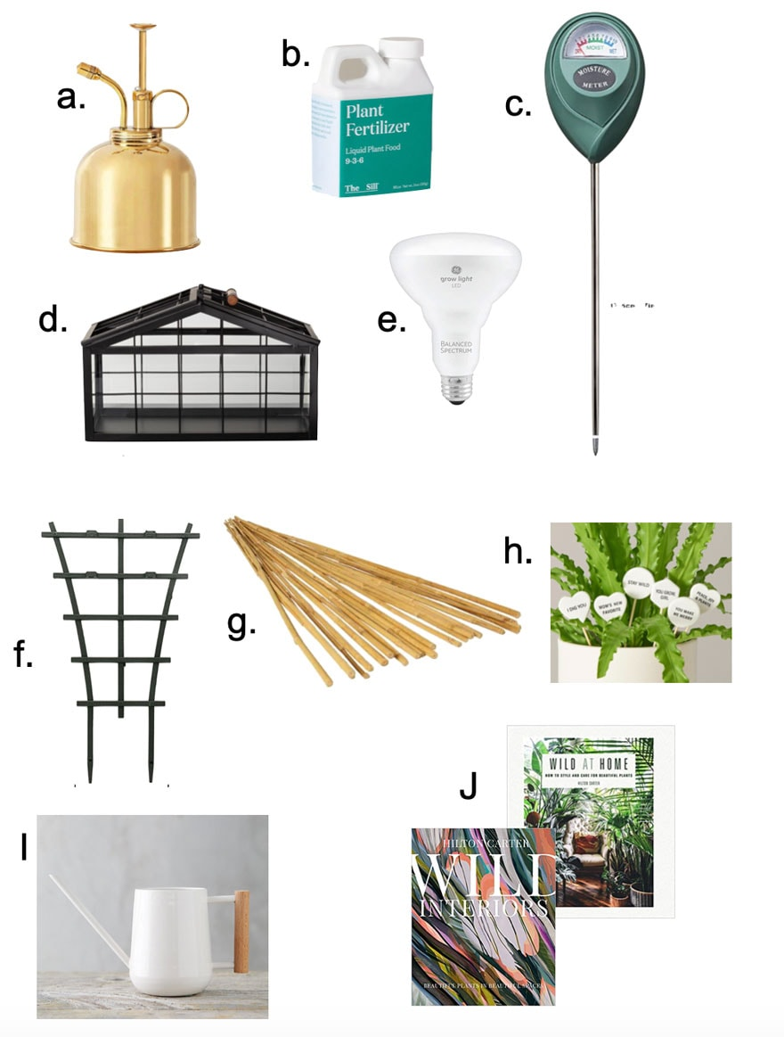 houseplant items on white background