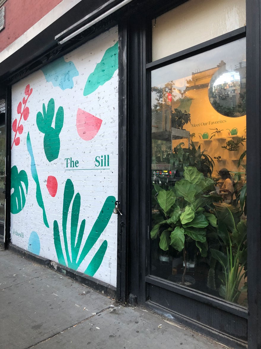 Plant storefront in NYC