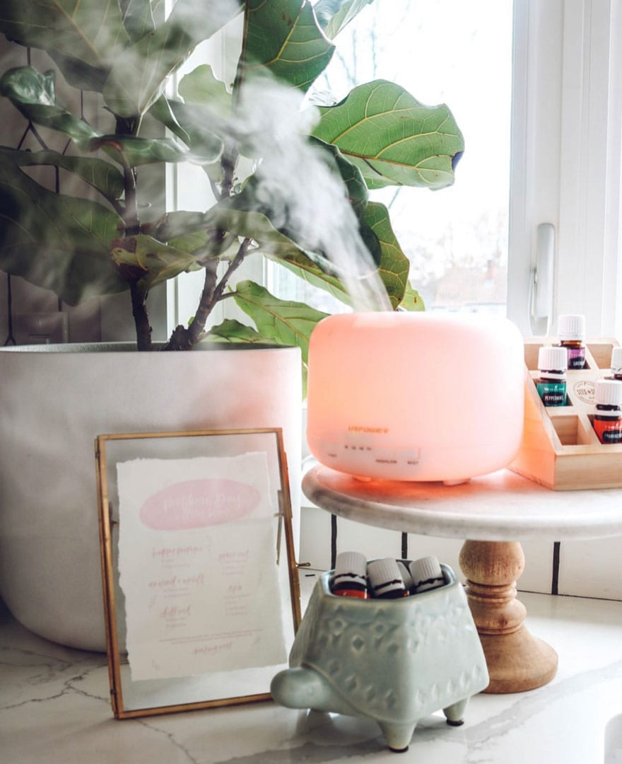 plant, frame, diffuser on cake stand, turtle bowl