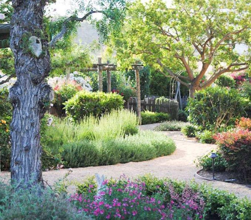 pathway in a lush garden