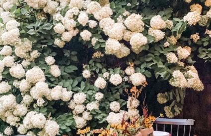 Lifestyle blogger Annie Diamond shares her simple diy flower bouquets