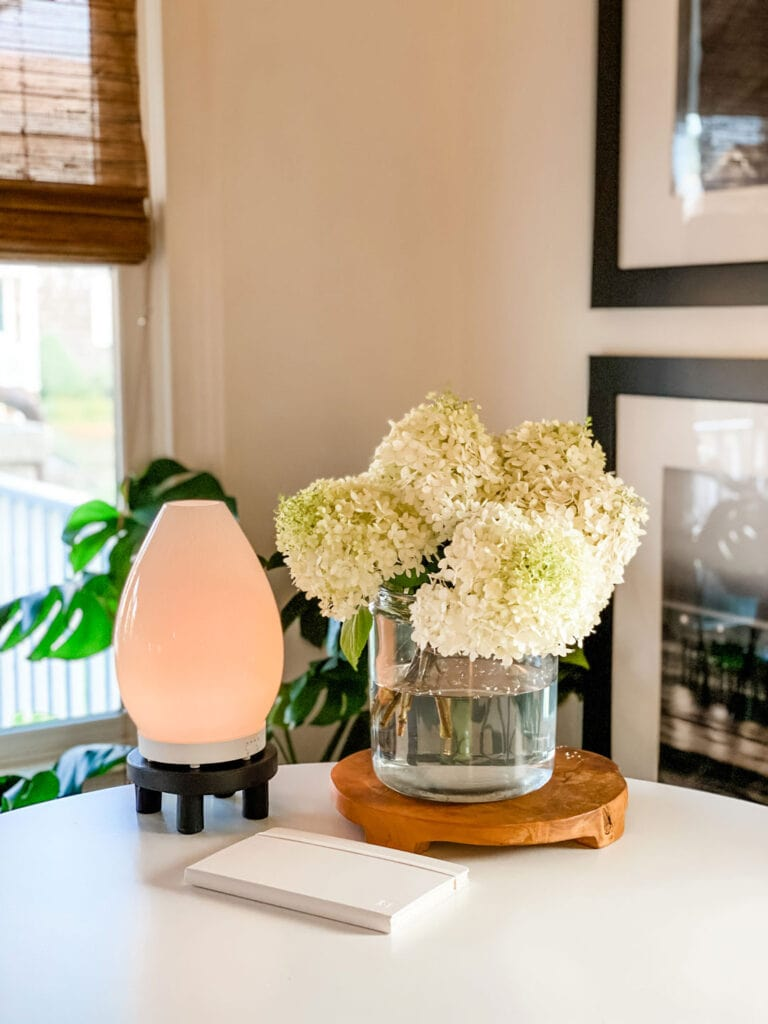 Lifestyle blogger Annie Diamond shares her favorite diffusers