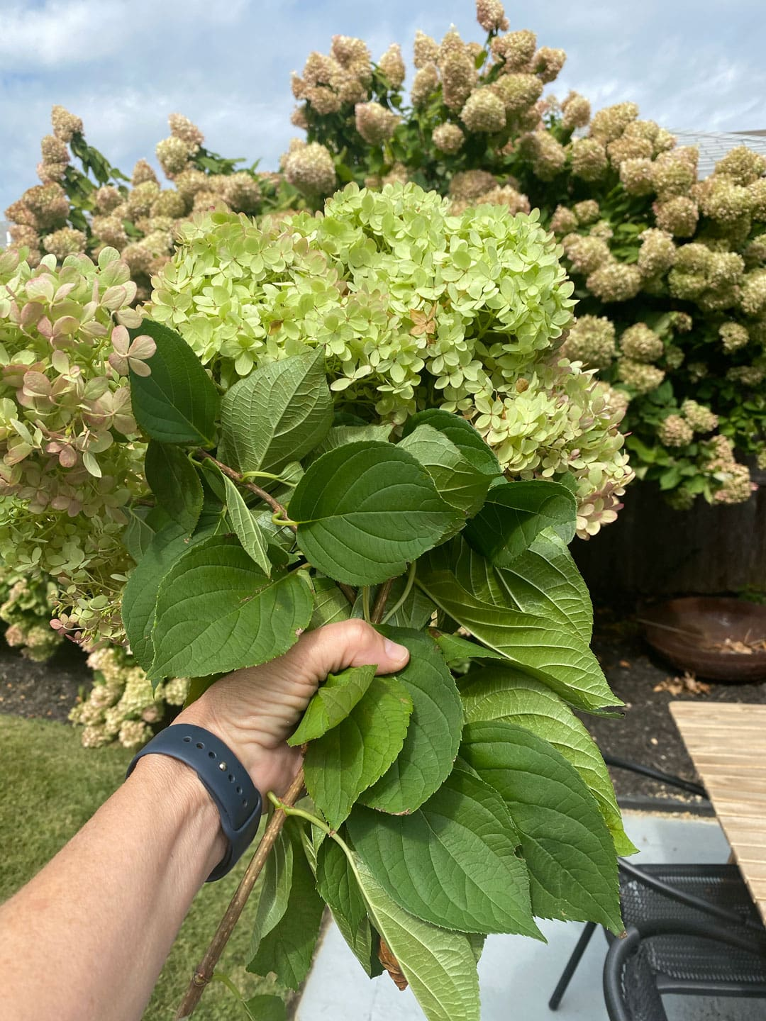 Lifestyle Blogger Annie Diamond shows how she uses a handful of hydrangeas in her outdoor door basket