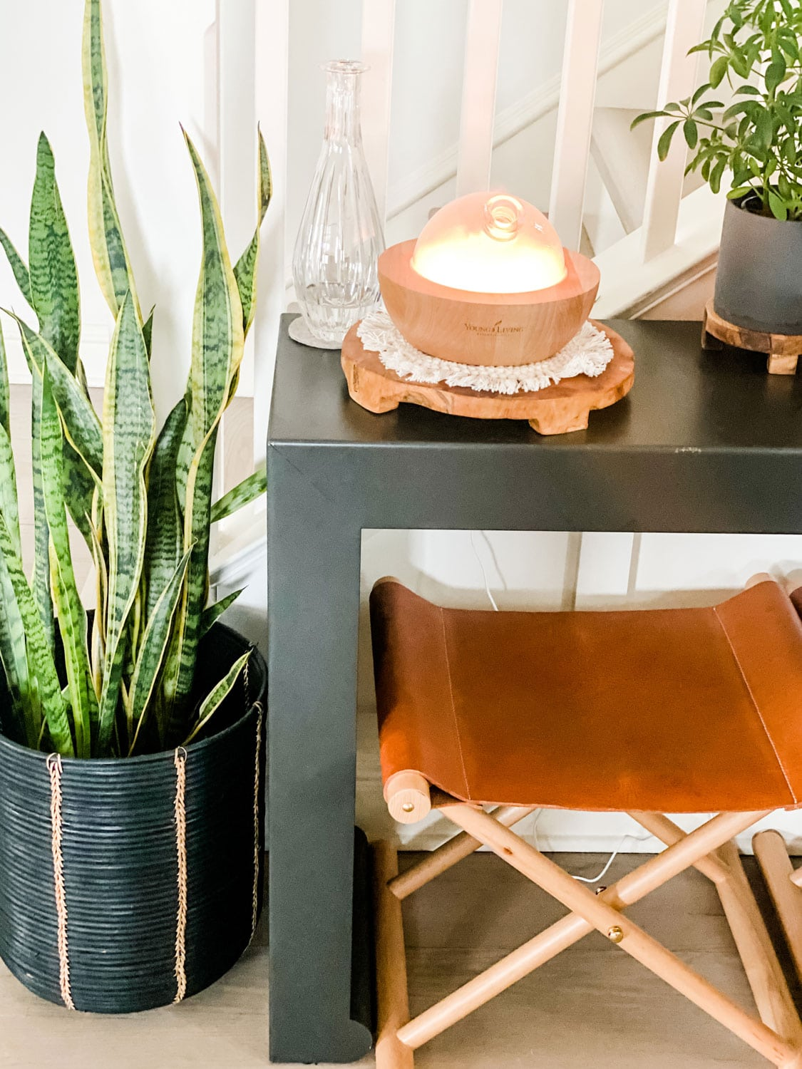 diffuser on wood trivet with snake plant and leather stool