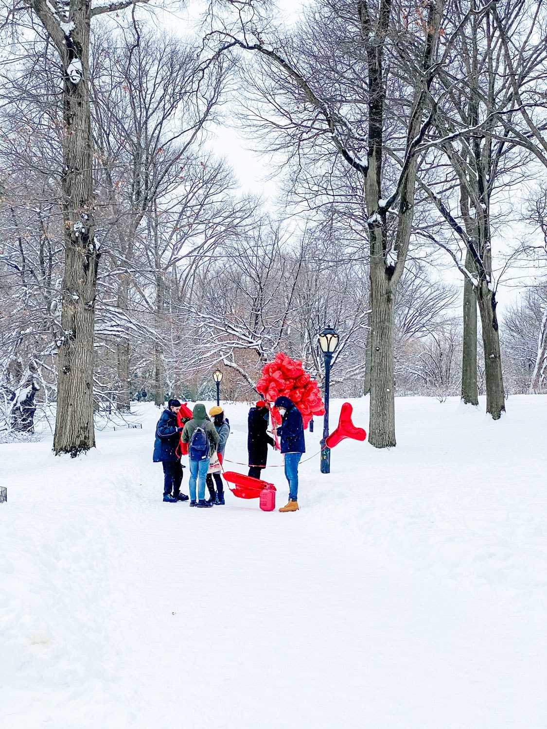 red balloons in Central Park in the snow