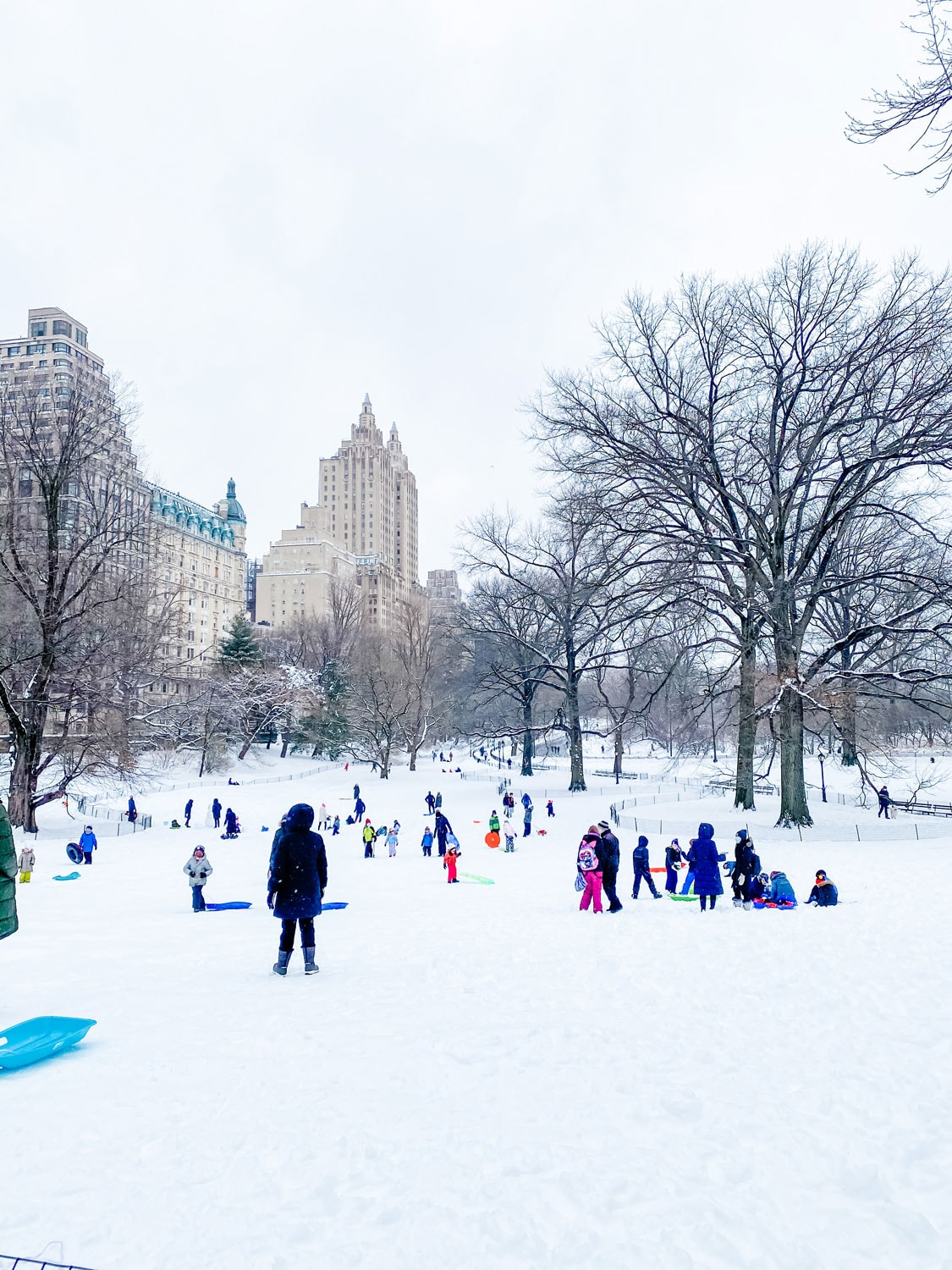 central park in snow nyc
